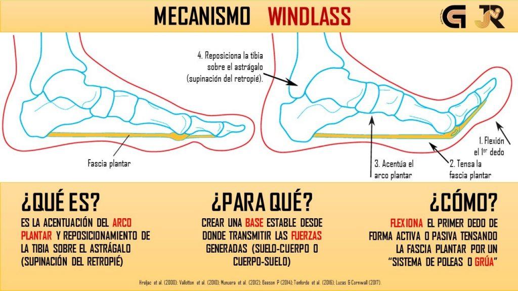 mecanismo de windlass